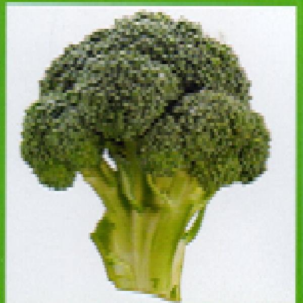 ブロッコリー ドシコ 種